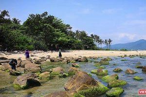 Đà Nẵng sẽ có dịch vụ 'trải nghiệm bình minh trên vịnh Nam Ô bằng thuyền thúng'