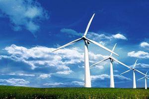 Hơn 3.000 tỷ đồng xây nhà máy điện gió Ninh Gia