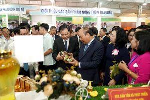 Thủ tướng mong muốn nông thôn Hà Nội là hình mẫu của cả nước