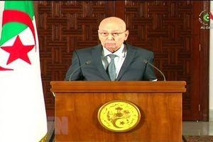 Algeria: 14 ứng cử viên chuẩn bị hồ sơ tham gia ứng cử tổng thống