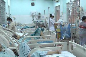 Ong vò vẽ tấn công, ít nhất 9 người ở Đồng Nai nhập viện