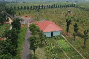 Vụ giao đất cho người nhà: Kiểm điểm Giám đốc Sở KH-ĐT Hà Nội