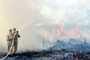 LHQ khai mạc Hội nghị Thượng đỉnh về biến đổi khí hậu: Rừng Amazon vẫn cháy dữ dội