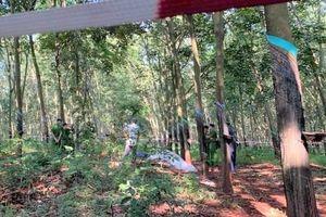 Nghi án thiếu nữ bị sát hại trong lô cao su ở Bà Rịa – Vũng Tàu