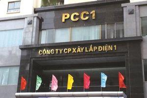 PCC1: Lợi đơn, lợi kép
