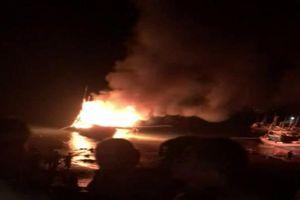 8 người cứu tàu cá cháy trong đêm, 2 anh em ruột tử vong, 1 người mất tích