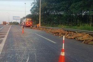 Xe khách tông xe tải, thân cây rơi đầy đường