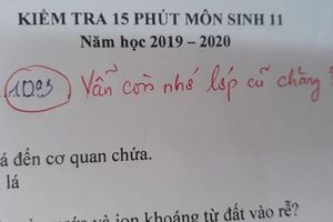 Lời phê hóm hỉnh của giáo viên trong bài kiểm tra lớp 11 khiến dân mạng thích thú
