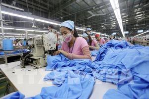 ADB: Nhu cầu nội địa sẽ thúc đẩy tăng trưởng của Việt Nam