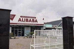 Công ty Alibaba huy động vốn theo phương thức đa cấp