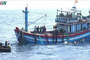 Một ngư dân Bình Định gặp nạn trên biển