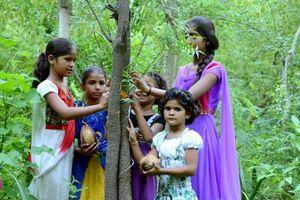 Truyện kể về ngôi làng Ấn Độ trồng 111 cây xanh mỗi khi có một bé gái ra đời