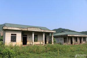 Dự án tái định cư tiền tỷ ở Thanh Chương thành nơi nhốt bò sau 10 năm dang dở