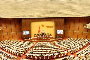 Phân công chuẩn bị Kỳ họp thứ 8, Quốc hội khóa XIV