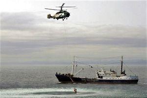 Nga bắt 3 tàu cá Triều Tiên và 262 ngư dân, thu giữ 30.000 con mực