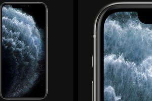 iPhone 11 sẽ gửi lời cảnh báo nếu 'bị thay' màn hình không chính hãng
