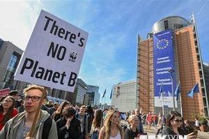Nhiều người tuần hành kêu gọi hành động vì khí hậu tại Canada