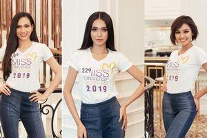 Bất ngờ nhan sắc của 10 thí đầu tiên lọt top 60 Hoa hậu Hoàn vũ Việt Nam 2019