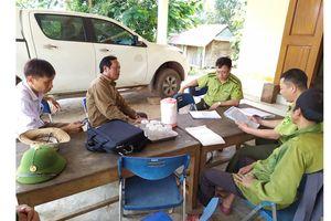 Quảng Bình: Tạm giữ nhiều động vật rừng nuôi nhốt trái phép