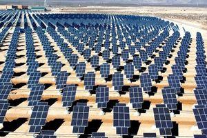 Đấu thầu điện mặt trời: WB đề xuất 2 mô hình, các tỉnh đồng loạt kêu khó