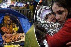 'Ứng phó bạo lực đối với lao động nữ di cư dành cho cán bộ ngoại giao'