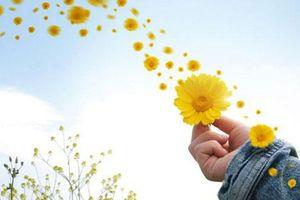 Con người đừng nghĩ hạnh phúc tự nhiên mà có, nó chỉ xuất hiện khi đảm bảo được điều kiện sau