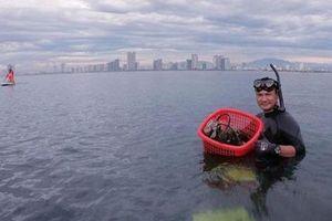 10 năm nhặt rác ở biển Sơn Trà