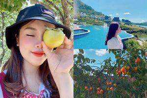 Cô gái tới Đà Lạt hái hồng, sống trọn niềm vui tại resort đẹp như truyện cổ tích ven hồ Tuyền Lâm