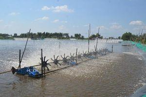 Kiên Giang đầu tư phát triển mạng lưới điện cho vùng sâu vùng xa