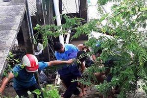 Nguyên nhân dẫn đến điện giật làm 5 công nhân thương vong ở Bến Tre