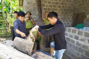 Tạm giữ động vật hoang dã nuôi nhốt tại vùng đệm Phong Nha - Kẻ Bàng
