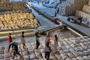 Xuất khẩu gạo 9 tháng: Lượng tăng nhưng giá trị giảm