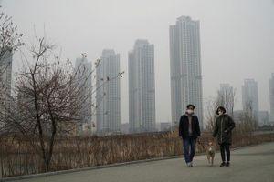 Nhiều nước châu Á chật vật chống ô nhiễm không khí