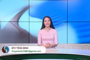 Bản tin TNMT số 39/2019 (số 105)