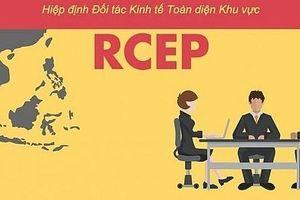 Các Bộ trưởng thương mại RCEP sẽ gặp nhau tại Bangkok vào ngày 10-12/10