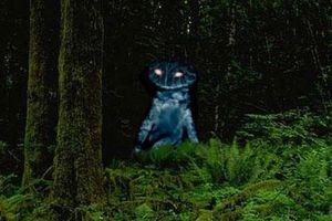 Những quái vật lòng hồ ghê rợn nhất thế giới