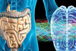 2 loại 'đau' báo hiệu ung thư ruột: Cảnh báo đối tượng này phải đi khám ngay lập tức