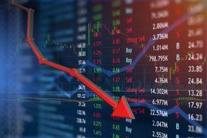 Cổ phiếu bị cắt margin, Petrolimex 'bay hơi' 2.300 tỷ, HAG 'nhẹ nhàng' hơn
