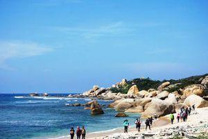 Khánh Hòa: Đề nghị chấm dứt hoạt động du lịch tự phát tại Mũi Đôi