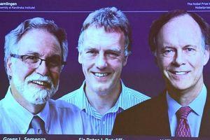 Giải Nobel Y học 2019 vinh danh 3 người mở ra hy vọng về điều trị ung thư