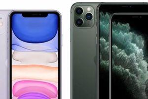 Ming-Chi Kuo dự đoán iPhone SE 2 vào quý 1/2020