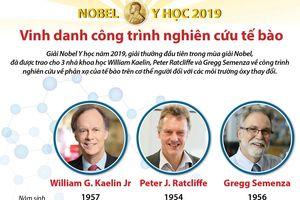 Nobel Y học 2019 vinh danh công trình nghiên cứu tế bào