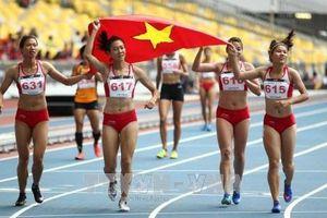 9 tháng, thể thao Việt Nam giành 39 huy chương vàng thế giới