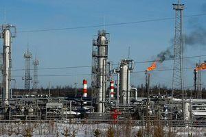Giá dầu tăng gần 1% do lo ngại bất ổn gia tăng tại Iraq
