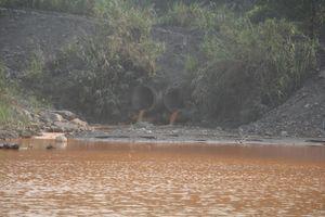 Quảng Ninh chỉ đạo 'nóng' vụ suối nước màu vàng khè chảy thẳng ra vịnh Hạ Long