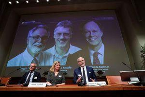 3 nhà khoa học người Anh và Mỹ được trao giải Nobel Y học 2019