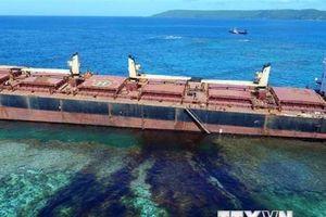 Brazil vớt hơn 100 tấn cặn dầu trên các bờ biển khắp cả nước