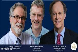 Chân dung ba nhà khoa học đoạt giải Nobel Y học 2019
