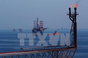 Giá dầu giảm phiên thứ ba liên tiếp