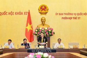 Dự kiến sẽ trình Quốc hội phê chuẩn các văn kiện về biên giới Việt Nam – Campuchia